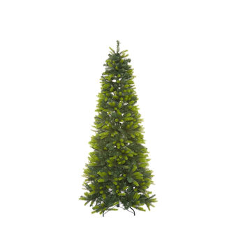 Saint Vincent Christmas tree, h 180 cm