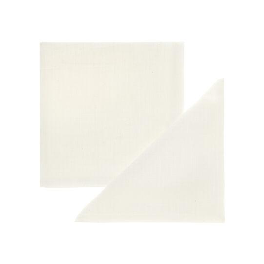 Pair of cotton napkins