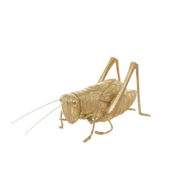 Decorative golden grasshopper
