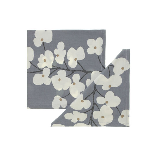 Pair of floral print napkins