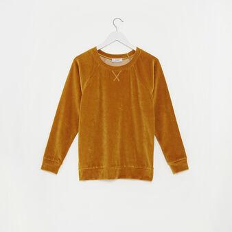 Solid colour velvet top