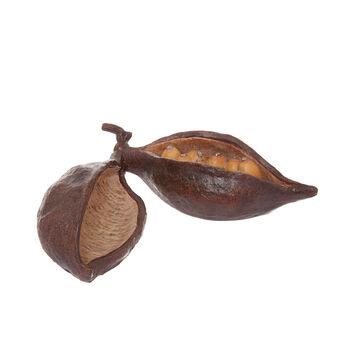 Frutto di cacao decorativo rifinito a mano