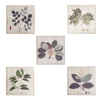 Herbal illustration on wood