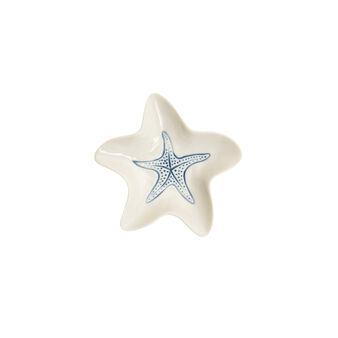 Coppetta porcellana a stella marina