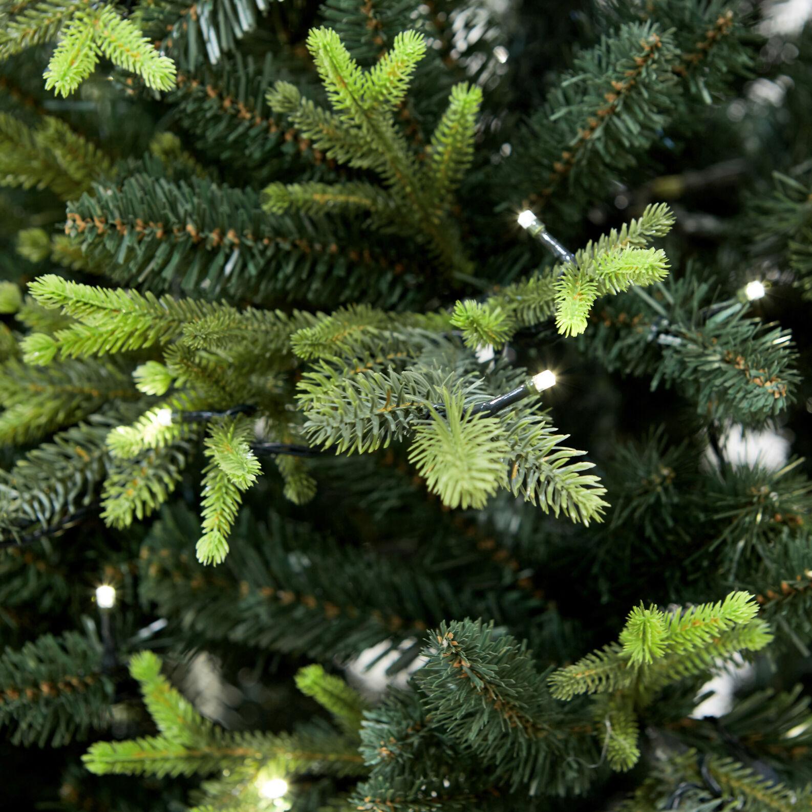 Christmas tree Aurora 450 LED H210cm