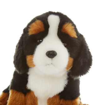 Bernese mountain dog soft toy