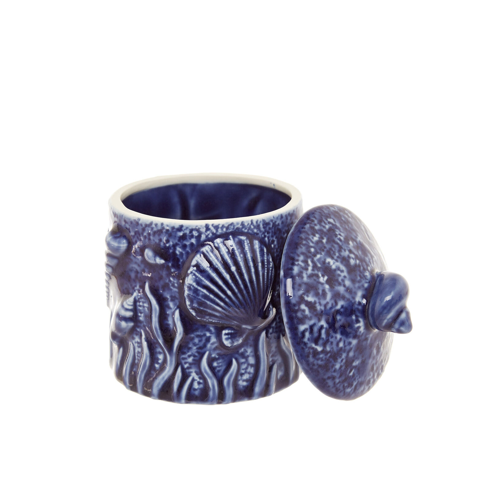 Porcelain jar with marine decoration