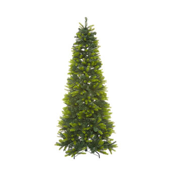 Saint Vincent Christmas tree, h 225 cm