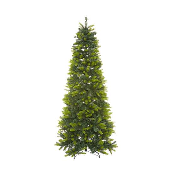 Saint Vincent Christmas tree, h 225 cm