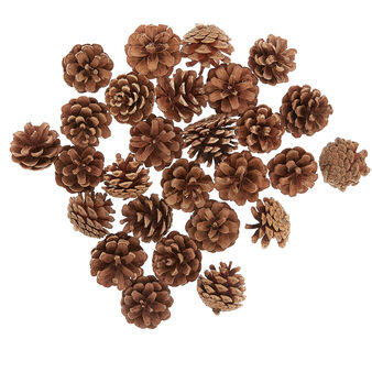 Box of decorative pine cones