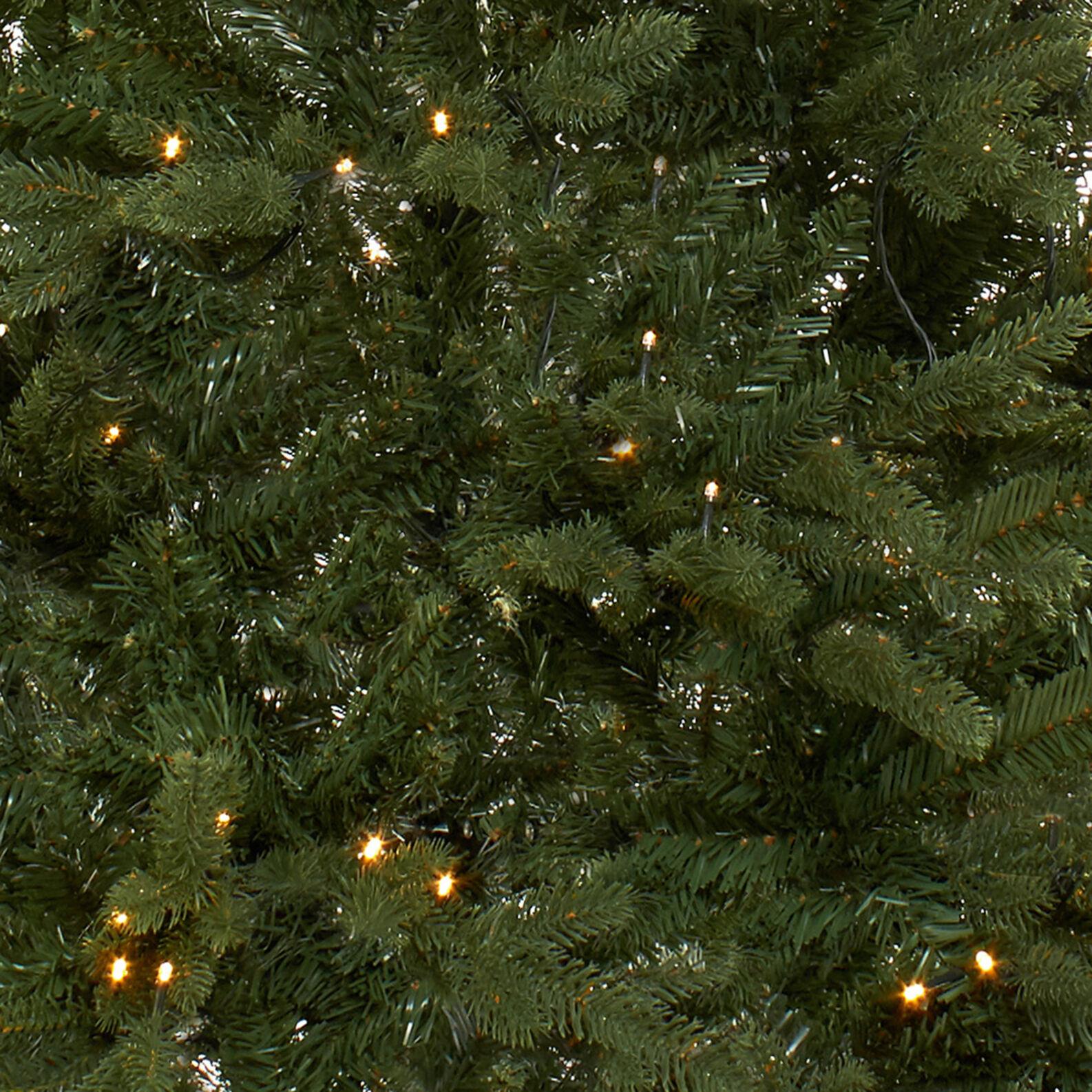 Albero Di Natale 400 Cm.Albero Di Natale Cortina Con Led 400 Luci H 210cm Coincasa