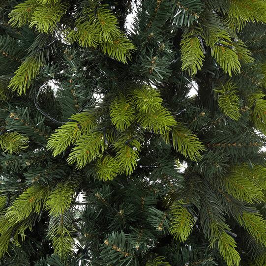 Saint Vincent Christmas tree 850LED H300cm