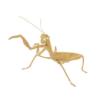 Decorative golden praying mantis