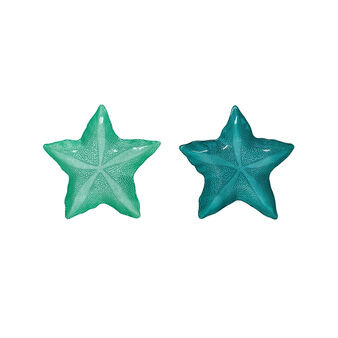 Small star glass plate