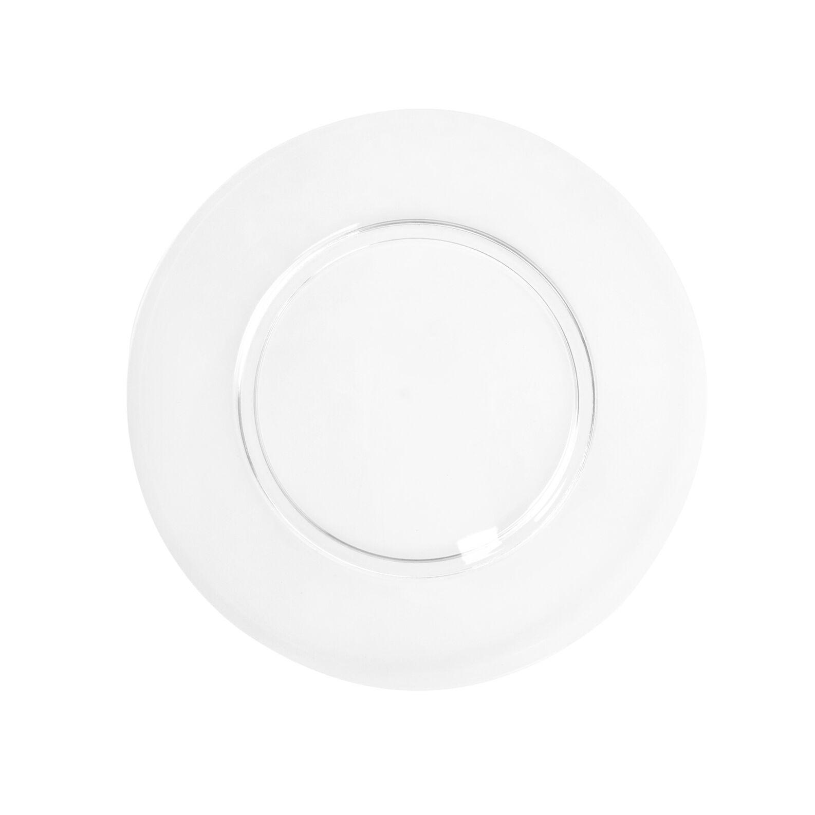 MS plastic dinner plate
