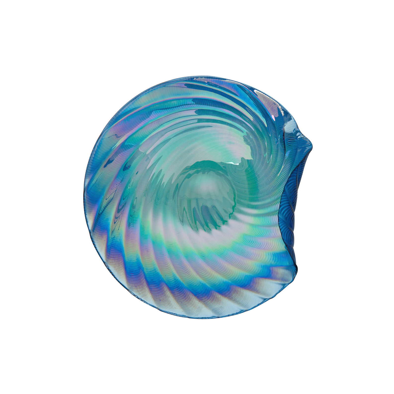 Shell glass cup