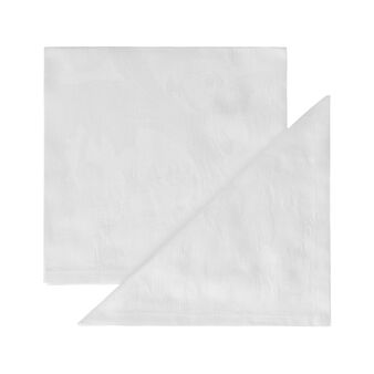 Two-pack Egyptian cotton jacquard napkins