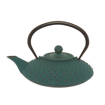 Cast iron teapot in Japanese style