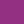 Viola porpora