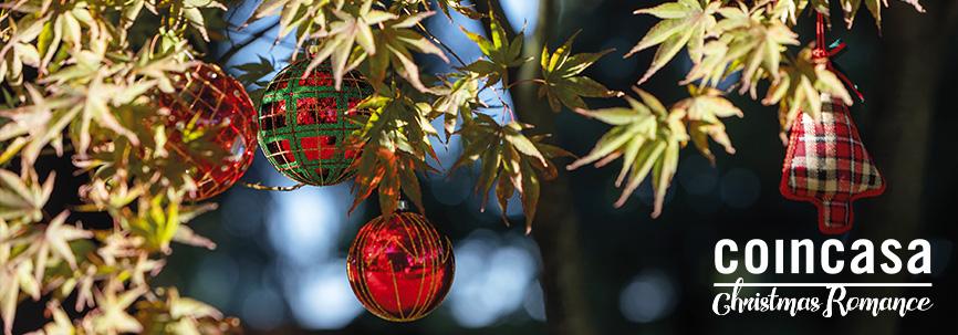 Decorazioni Natalizie Zalando.Natale 2018 Addobbi E Decorazioni Per La Casa Coincasa